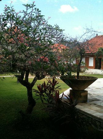 Musee Pasifika Nusa Dua Bali Picture Museum Kab Badung