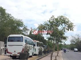 Pemkab Diminta Serius Tangani Parkir Tanjung Benoa Denpost Sejumlah Bus
