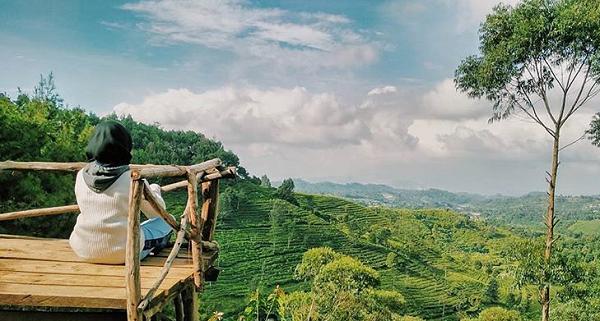 30 Gambar Tempat Wisata Kabupaten Bandung Barat Hits Bukit Senyum