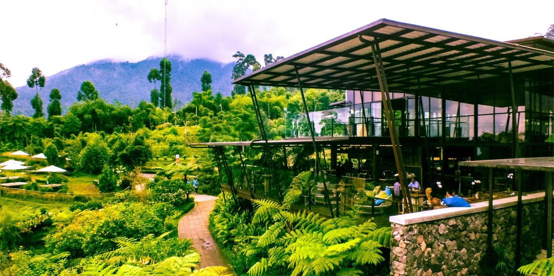 51 Wisata Traveling Lembang Bandung Eo Outbound Kebun Teh Sukawana
