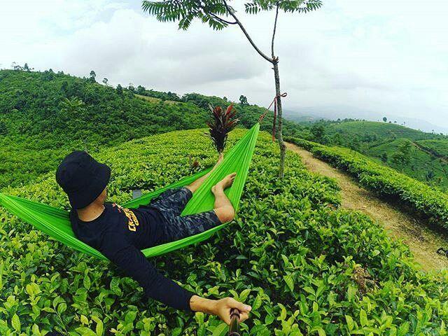 Pin Hammock Buddy Instagram Pinterest Bandung Indonesia Post Piknik Majalengka
