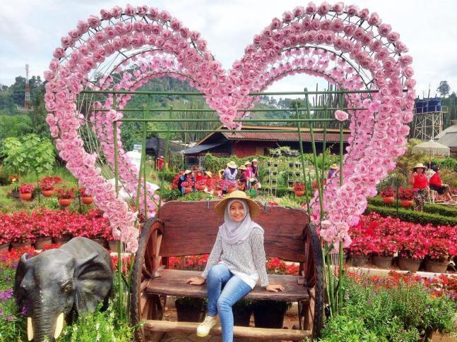 10 Foto Kebun Begonia Lembang Bandung Alamat Lokasi Tiket Jalan
