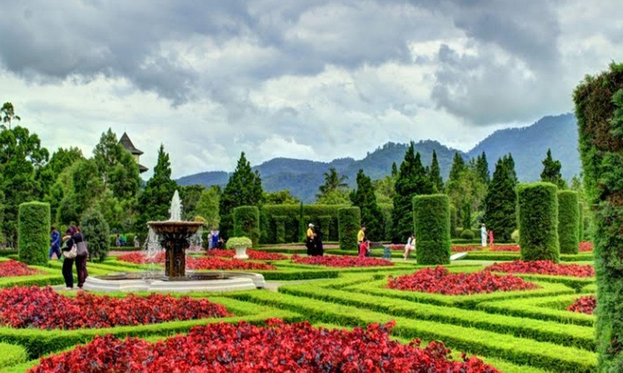 10 Foto Kebun Begonia Lembang Bandung Alamat Lokasi Tiket Taman