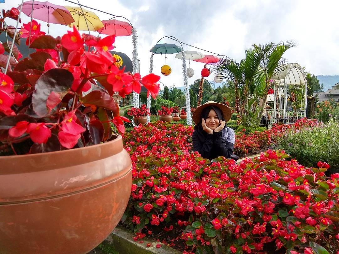 17 Wisata Alam Bandung Romantis Mytravelholic Taman Begonia Terbagus Kab