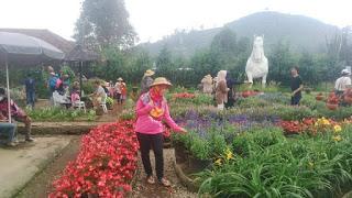 Family Journey Profil Taman Begonia Lembang Kab Bandung Barat