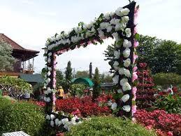 Taman Bunga Begonia Lembang Xplora Id Edukasi Kab Bandung Barat