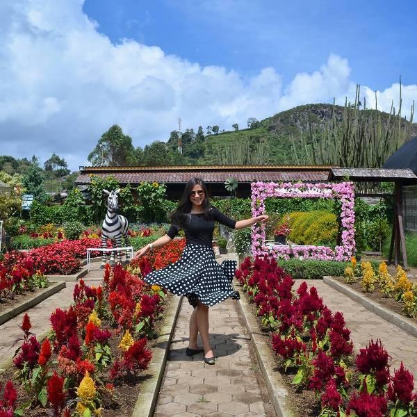 Wisata Kekinian Bandung Berita Jawa Barat Terkini Hari Taman Bunga