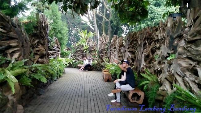 Liburan Seru Kawasan Wisata Farm House Lembang Bandung Piknik Farmhouse