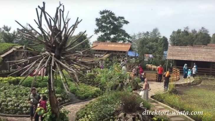 Nikmati Liburan Nuansa Peternakan Eropa Lembang Bandung Travelling Farmhouse Kab