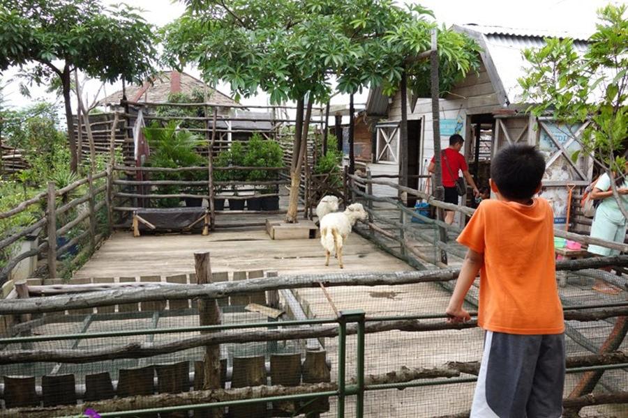 19 Tempat Wisata Anak Terasik Keluarga Bandung Dua Kebun Binatang