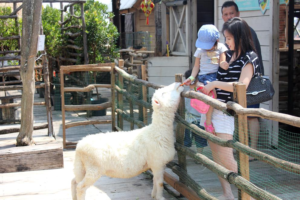 30 Tempat Wisata Populer Bandung Vebma Kebun Binatang Paris Van