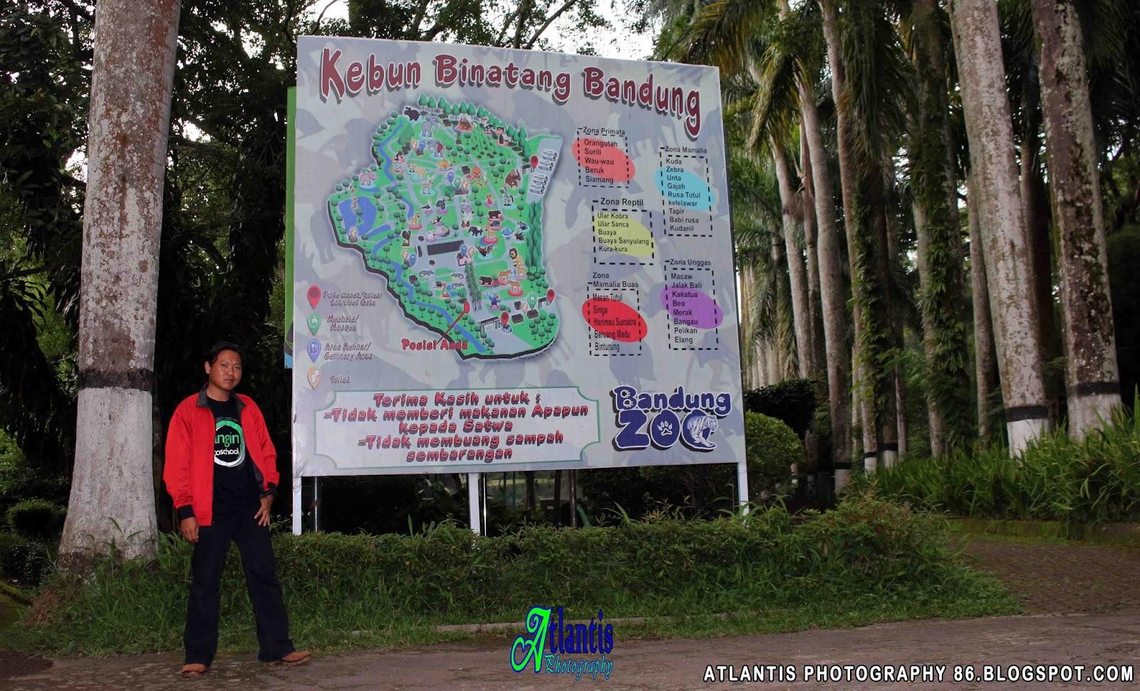 Atlantis Photography Krui Bandung Zoo Kebun Binatang Berada Jalan Tamansari