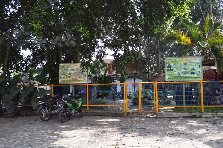 Kebun Binatang Garut Cikembulan 1 Jpg Terdapat Sekitar 16 Km
