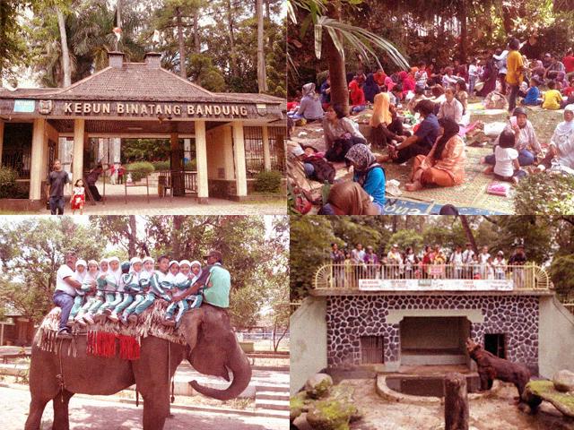 Nostalgia Wisata Keluarga Kebun Binatang Bandung Kab