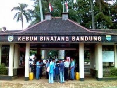 Wisata Kebun Binatang Bandung Tempat Terbaik Indonesia Pintu Gerbang Masuk