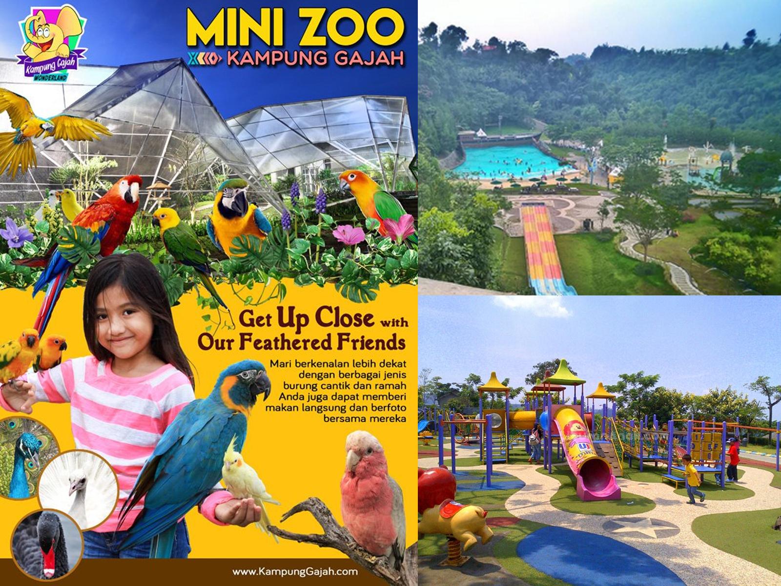 Wisata Kebun Binatang Mini Kampung Gajah Wonderland Wisatabdg Bandung Kab