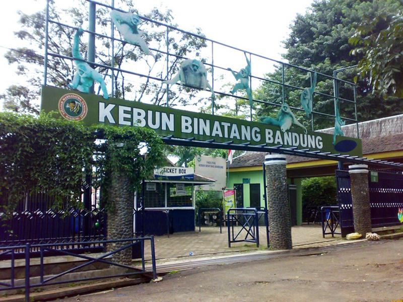 120 Tempat Wisata Bandung Menarik Wajib Dikunjungi Memiliki Kebun Binatang