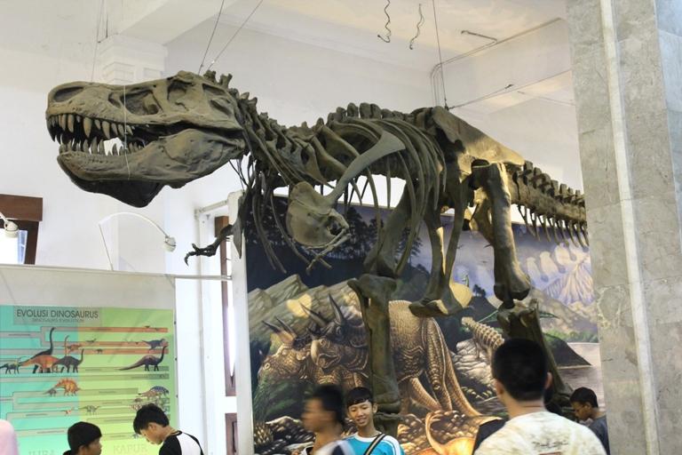 Belajar Tentang Bumi Ya Museum Geologi Bandung Nulis Feature Kerangka