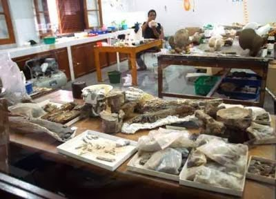 Serunya Wisata Edukasi Museum Geologi Bandung Tempat Sejarah 3 Kab