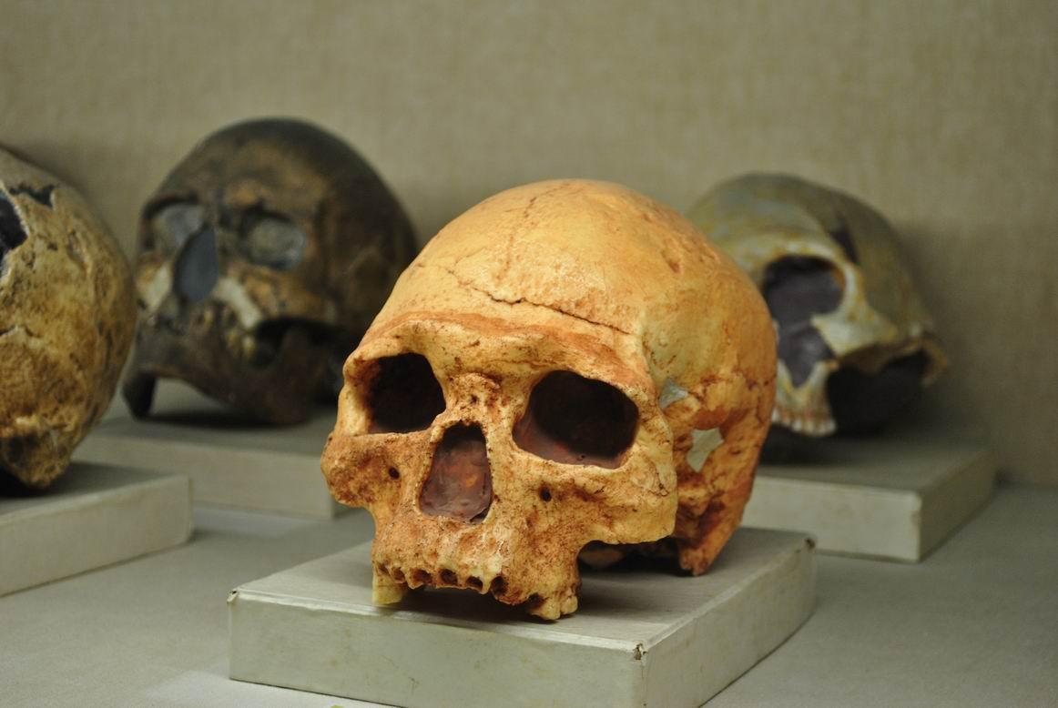 Tempat Wisata Bandung Wajib Kamu Kunjungi Blog Unik Museum Geologi