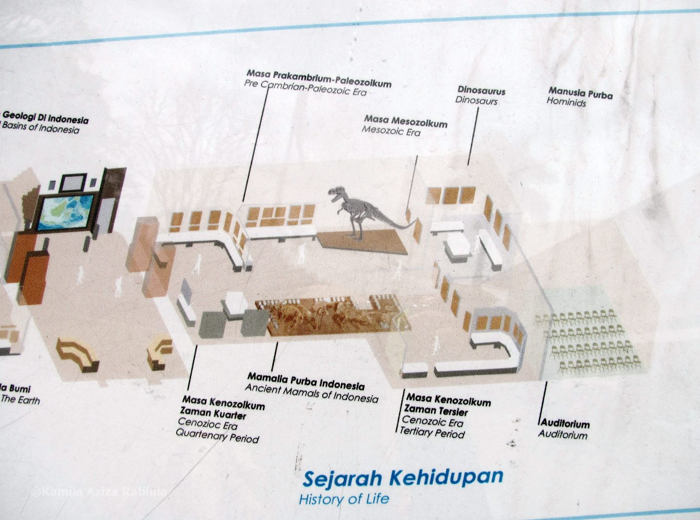 Museum Geologi Bandung Mind Forest Peta Ruang Peragaan Lantai 1
