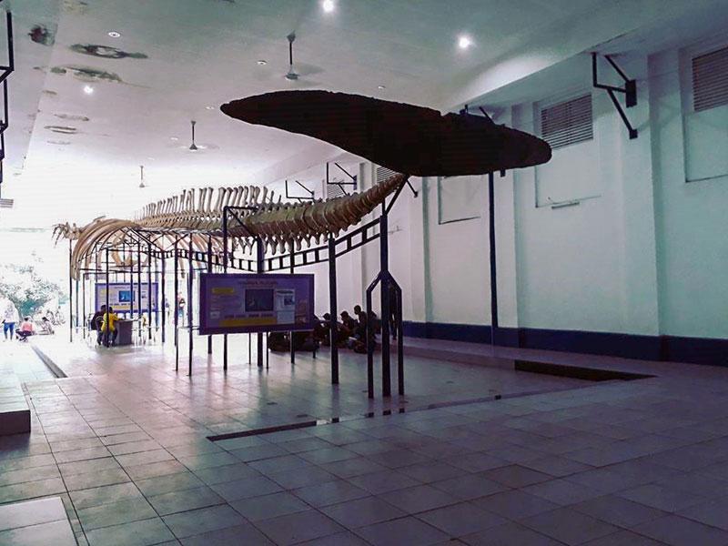 20 Tempat Wisata Anak Bogor Penuh Petualangan Keceriaan Artinya Berkunjung
