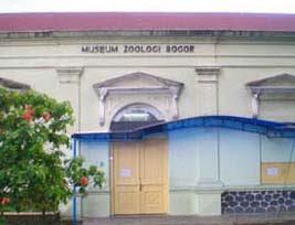 2010 12 19 Pariwisata Museum Zoologi Bogor Mengandung Unsur Pendidikan