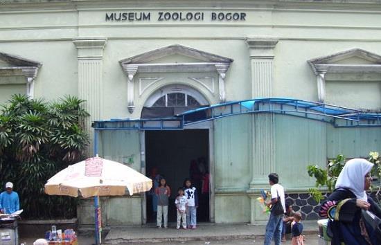 Harga Tiket Masuk Museum Zoologi Bogor Terbaru Mei 2018 Musium