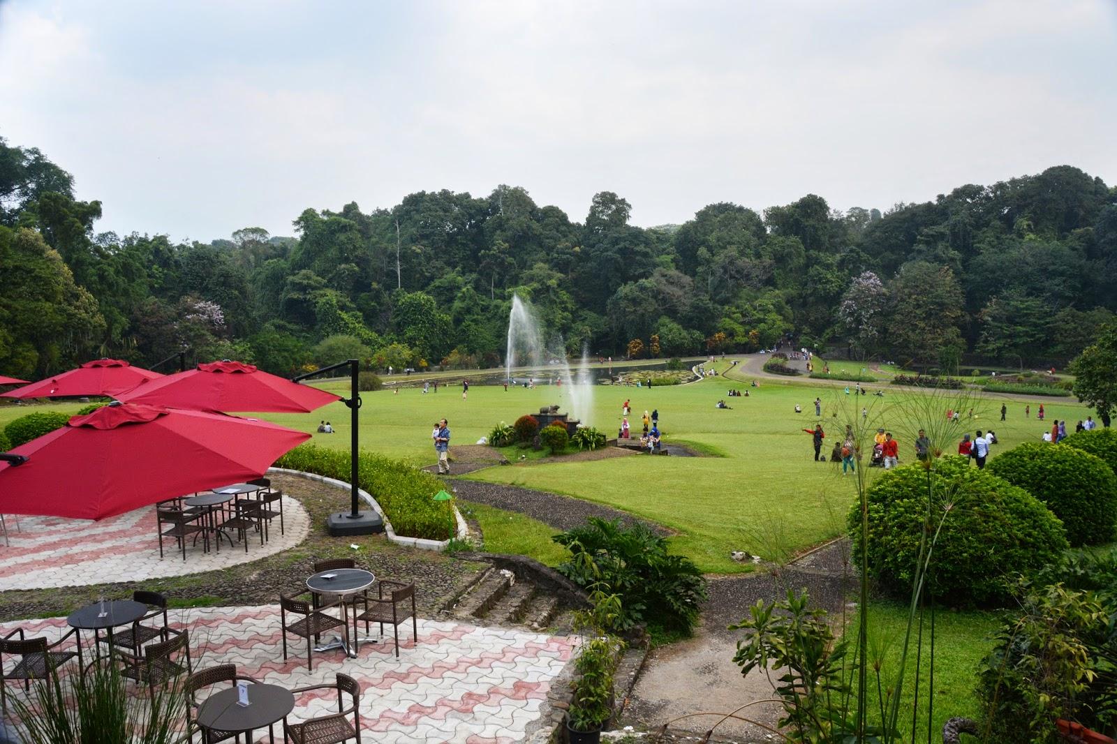 Mengenang Reffles Indonesia Indah Cobalah Datang Museum Zoologi Bogor Tersebut