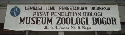 Museum Zoologi Bogor Tempat Study Tour Favorit Kedua Bab Dikelola