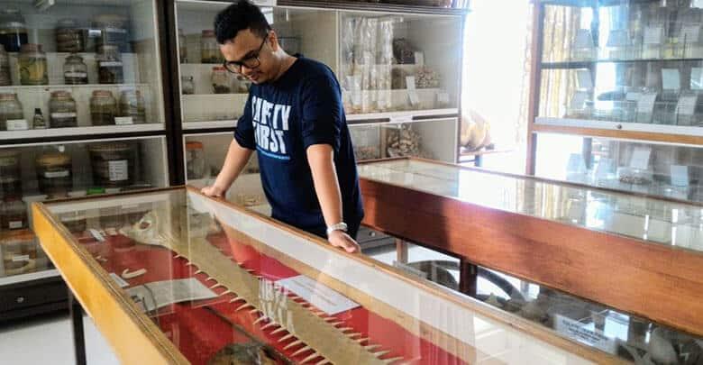Museum Zoologi Frater Vianny Macigo Malang Musium Kab Bandung