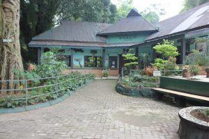 Museum Zoologi Pematang Siantar Sumatera Utara Https Tamanhewansiantar Musium Kab