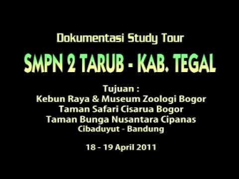 Smp Negeri 2 Tarub Tegal Youtube Musium Zoologi Kab Bandung