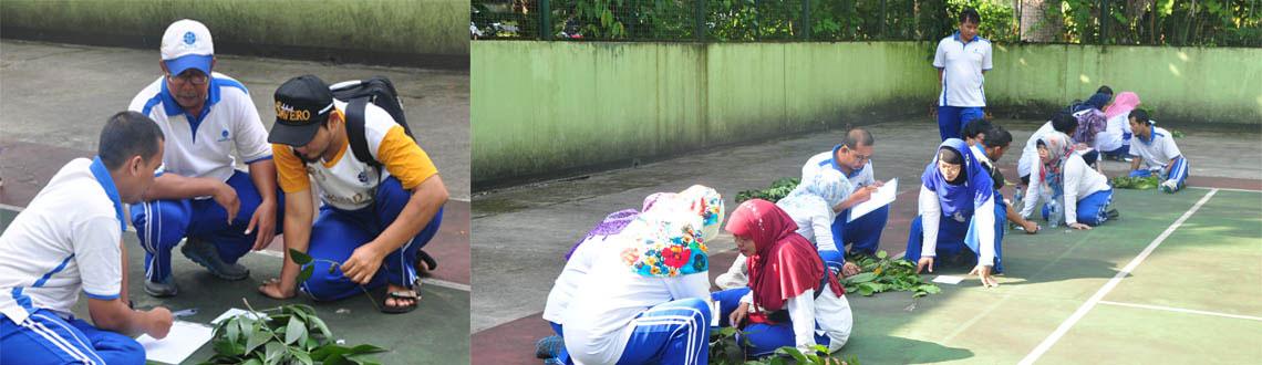 Website Pkt Kebun Raya Bogor Lipi Lembaga Lomba Identifikasi Tumbuhan