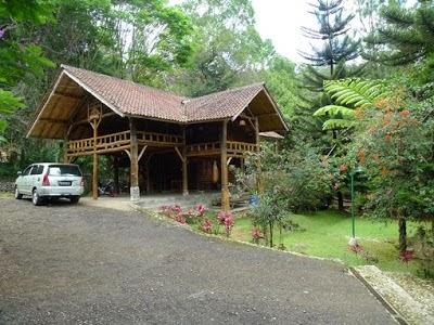 Villa Cempaka Pangalengan Bandung Rijal Maulana Detail Informasi Taman Bougenville
