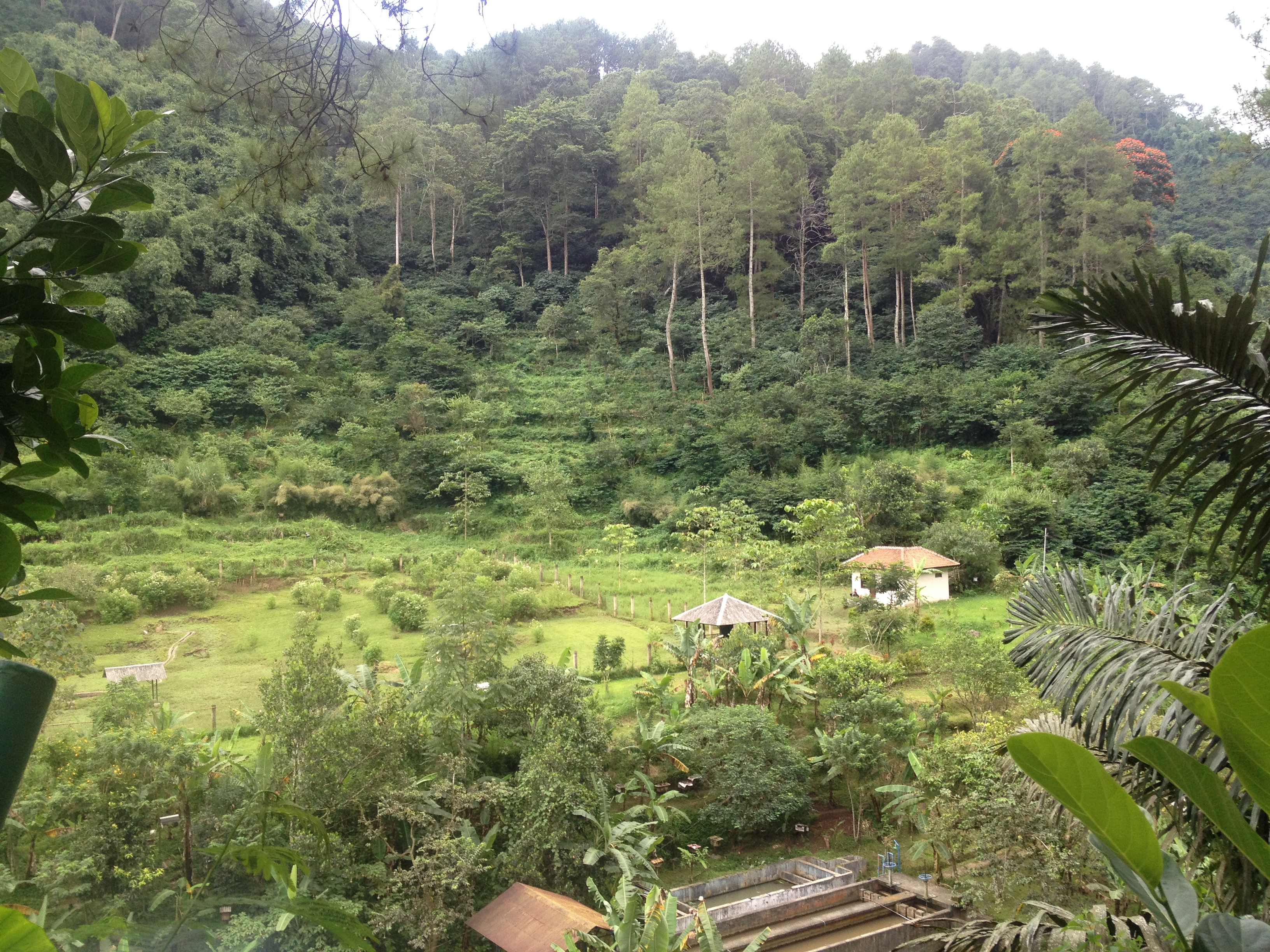 Traveling West Java Indonesia Finish Taman Hutan Raya Ir Djuanda