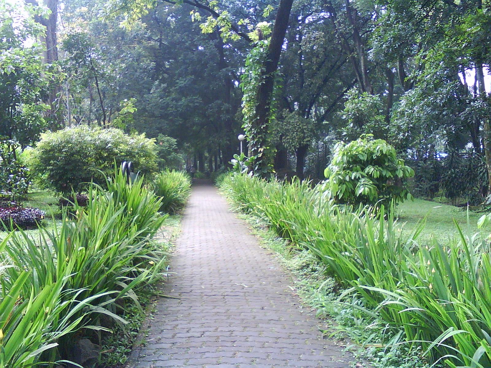 Refreshing Taman Lansia Bandung Kab