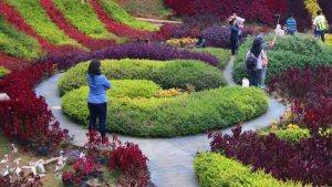 Taman Bunga Bandung Dikunjungi Pelancong Barusen Hills Lansia Kab
