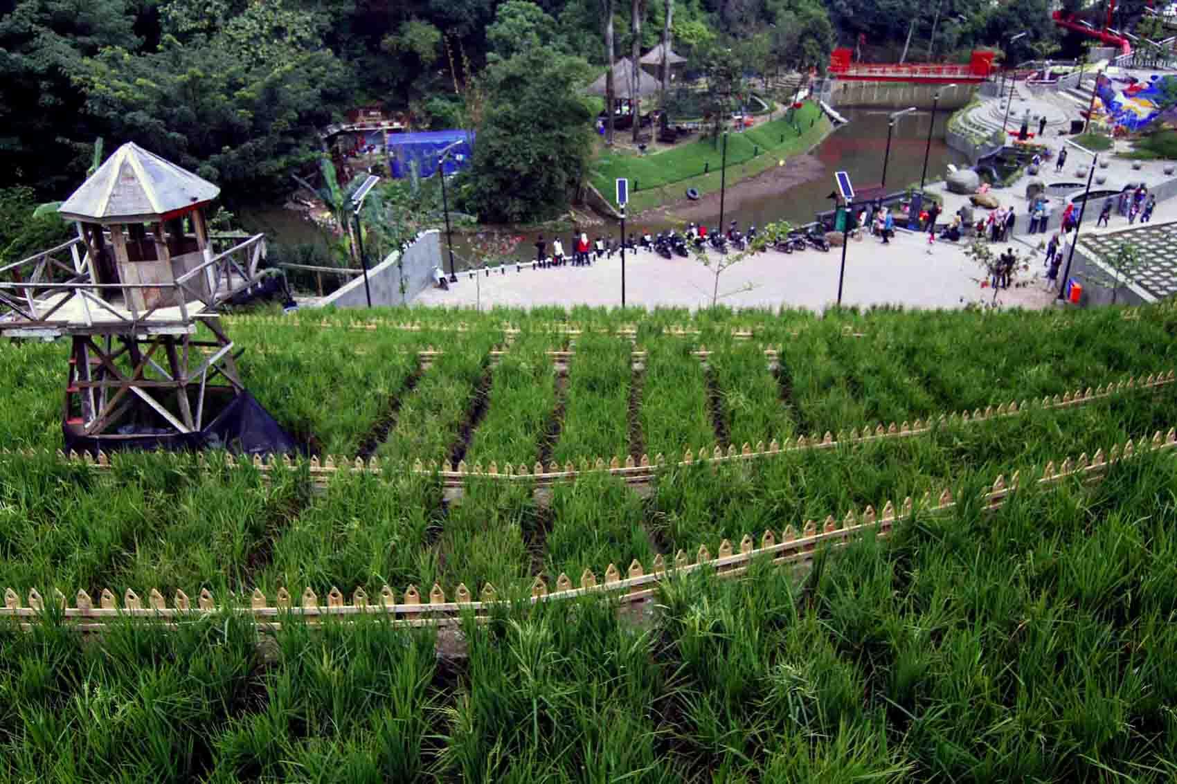 Rth Bandung Nambah 1 09 Persen Dua Teras Cihampelas Kab