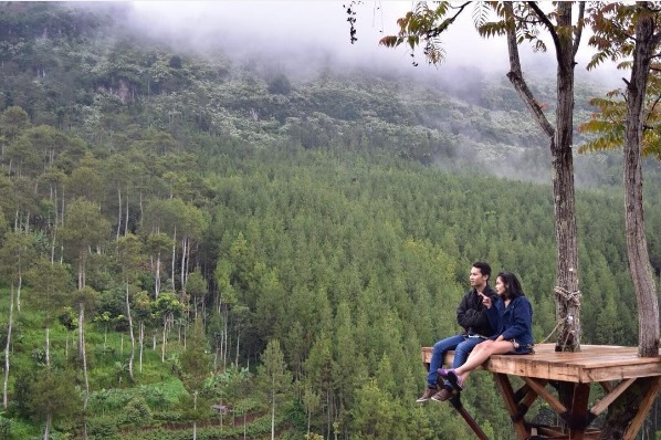 10 Foto Lodge Maribaya Earthbound Adventure Park Cibodas Lembang Hutan