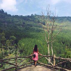 Lodge Maribaya Bikin Ga Move Bandung Ravishing Pict Shot Brilliant