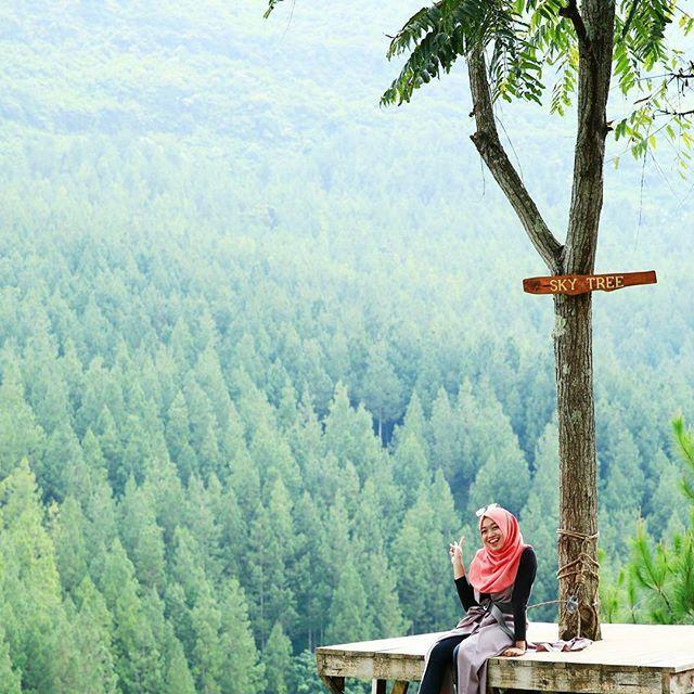 Lodge Maribaya Lembang Wisata Bandung Http Anekatempatkuliner Blogspot Kab