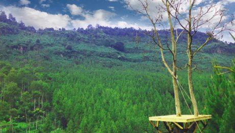 Lodge Maribaya Outbound Lembang Bandung Kab