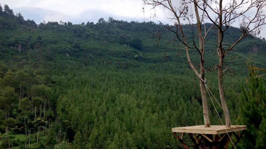 Mengintip Lodge Maribaya Wisata Hits Lembang Beritahati Kab Bandung