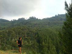 Omas Waterfall Tahura Ir Djuanda Maribaya Lembang Kab Bandung Lodge
