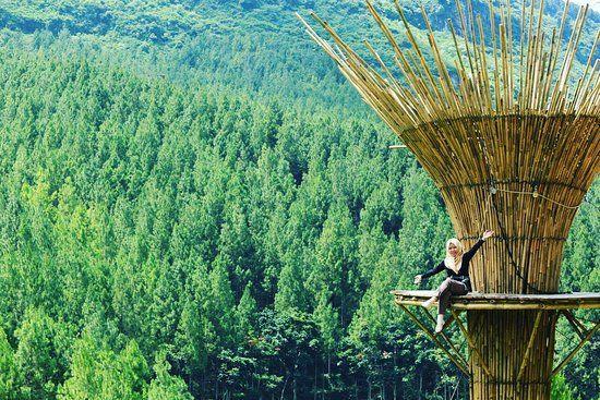 Sky Tree Lodge Maribaya Lembang Indonesia Pinterest Kab Bandung