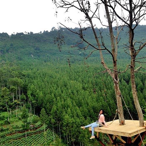 Sky Tree Lodge Maribaya Lembang Indonesia Pinterest Lembangbandungindonesia Kab Bandung