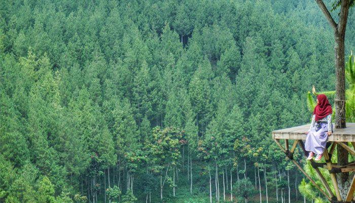 Tempat Wisata Hits Bandung Lodge Maribaya Travelling Kab