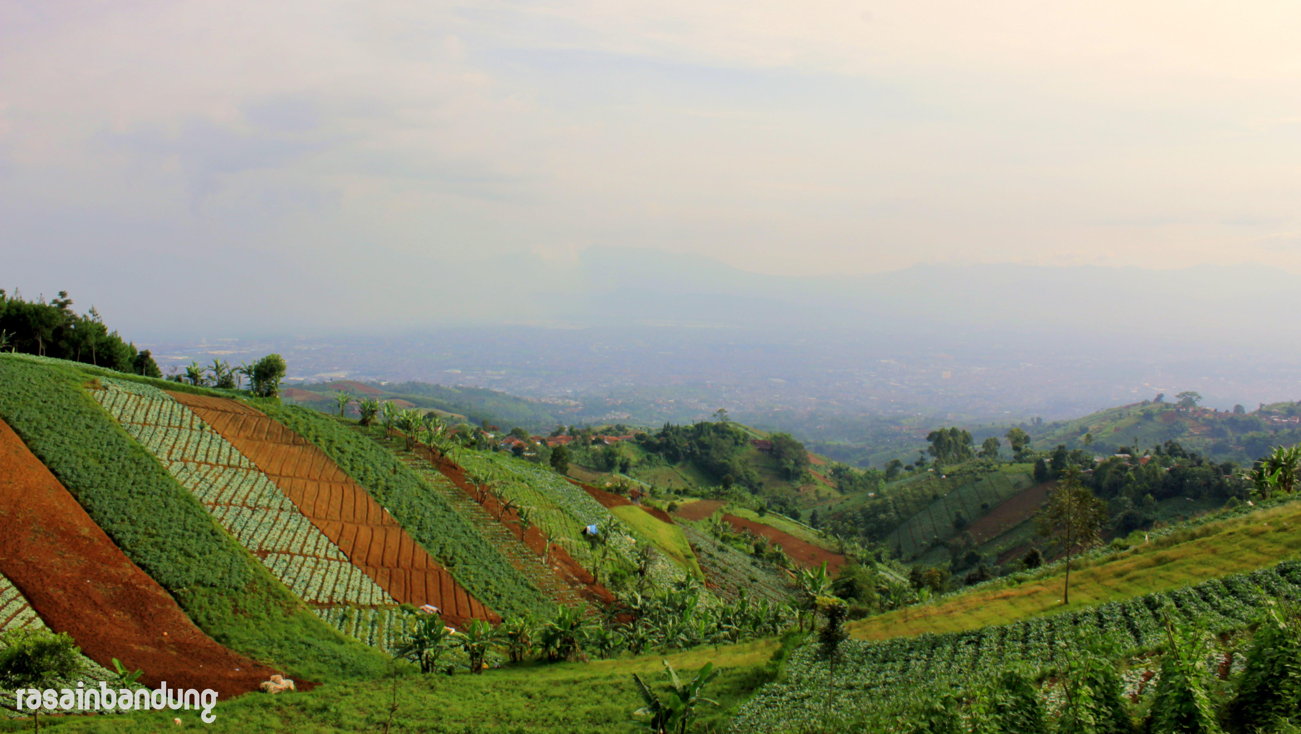 Bukit Moko Puncak Bintang Titik Tertinggi Kota Bandung Pemandangan Warung