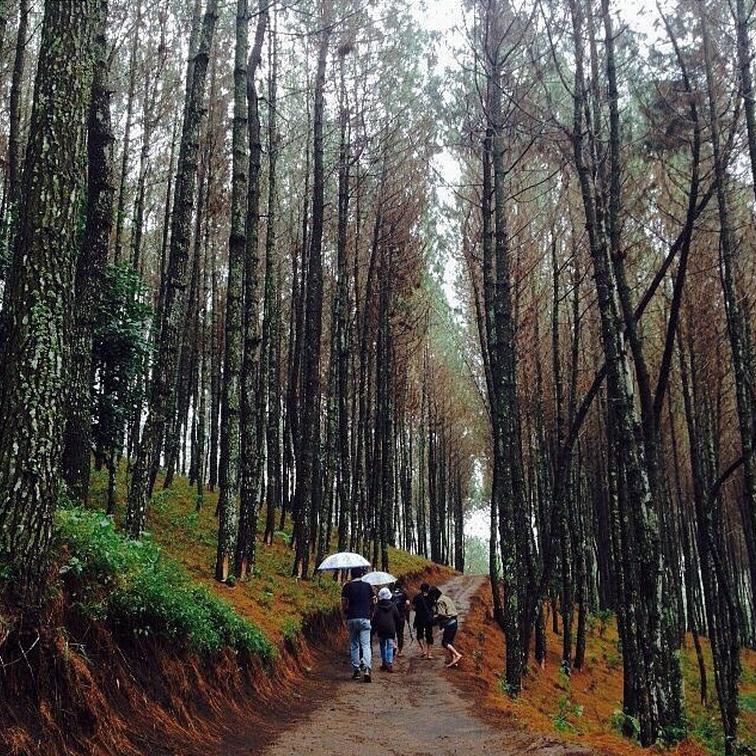 Perjalanan Pulas Inn Puncak Bintang Warung Daweung Bukit Kab Bandung